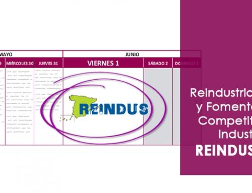 Reindustrialización y Fomento de la Competitividad Industrial – REINDUS 2018
